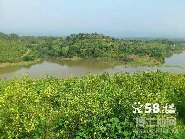 《裕翔土地》河源市万绿湖千亩湖景庄园